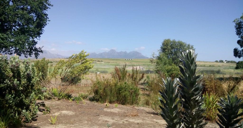 spier-wine-farm-garden-walk