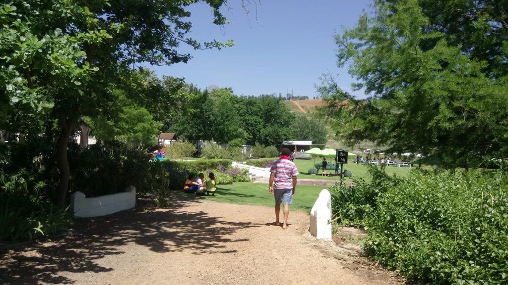 warwick-wine-estate-gardens