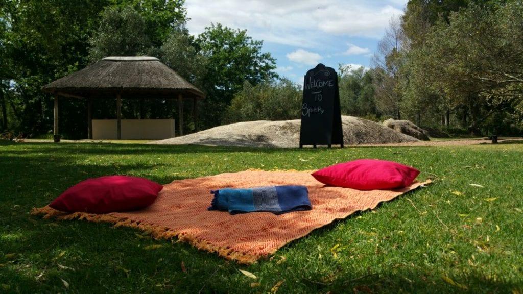 picnics-spier-wine-farm