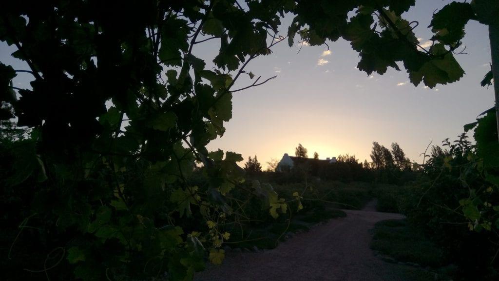 sunset-wellington-cape-winelands