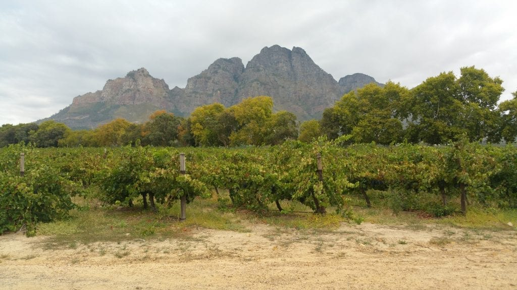 drakenstein-mountains-boschendal