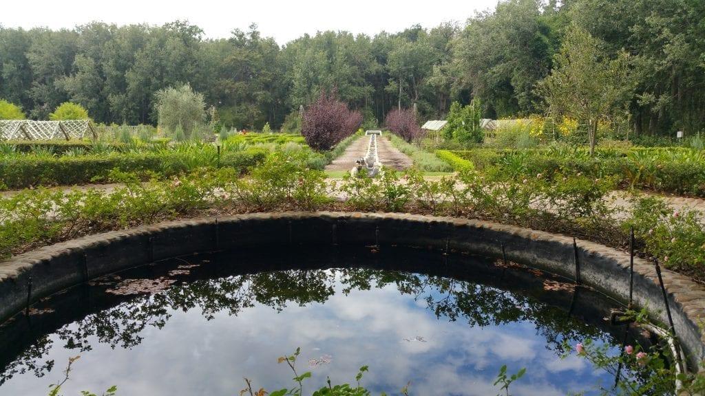 gardens-to-explore-year-round-near-the-cape-winelands-boschendal