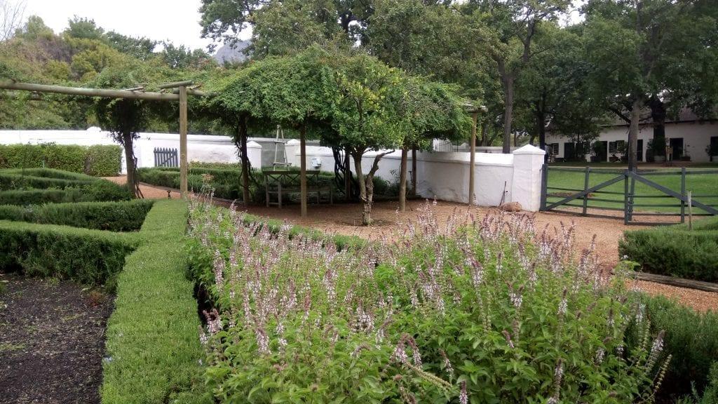 boschendal-herb-garden