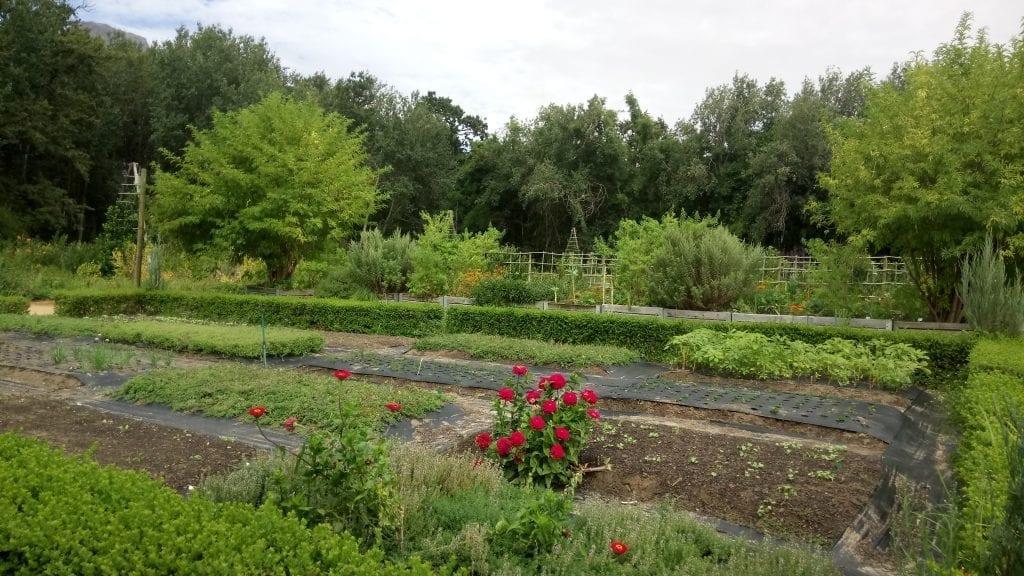 werf-food-garden-boschendal