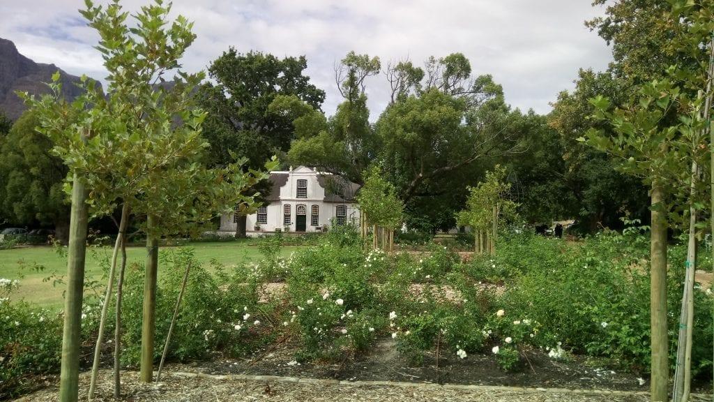 rhone-homestead-boschendal