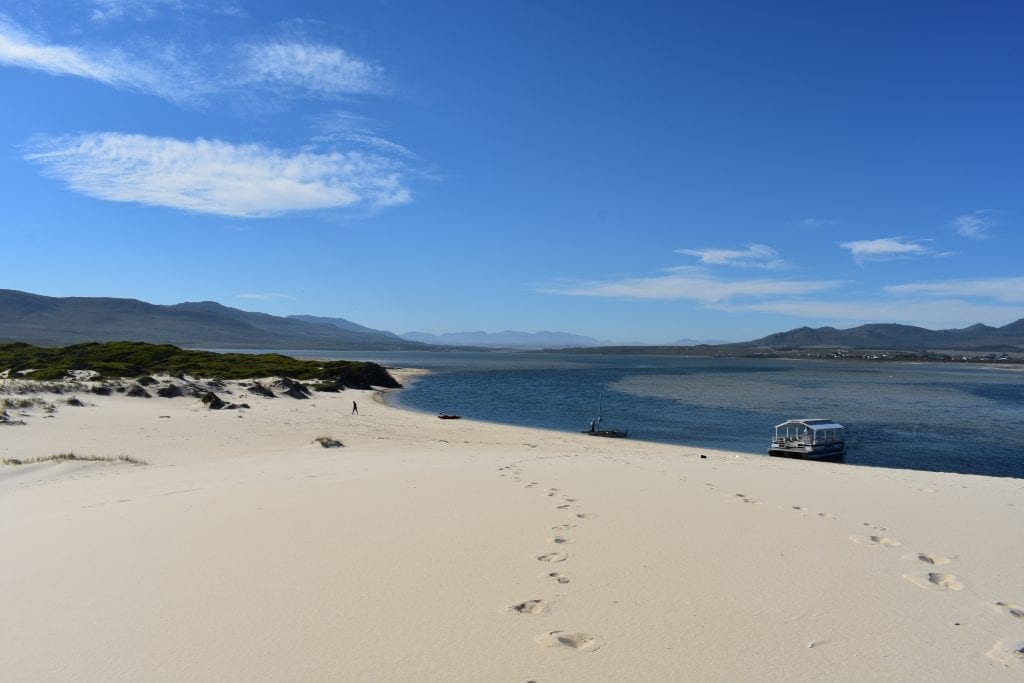 benguela-cove-lagoon-wine-estate-pontoon-boat-trip