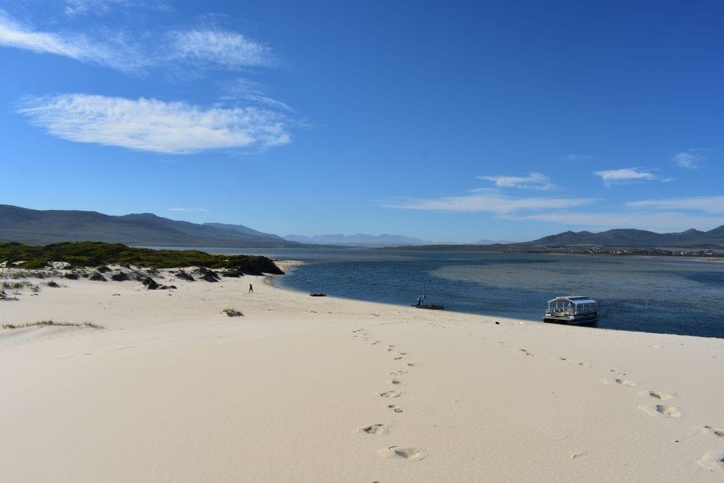 benguela-cove-lagoon-wine-estate-pontoon-boat-trip
