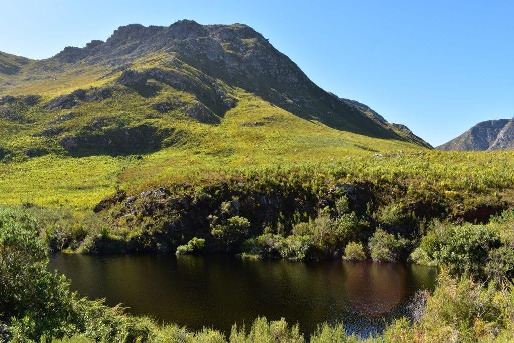 kogelberg-nature-reserve-overberg