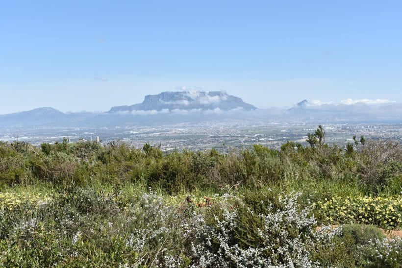tygerberg-nature-reserve-cape-town