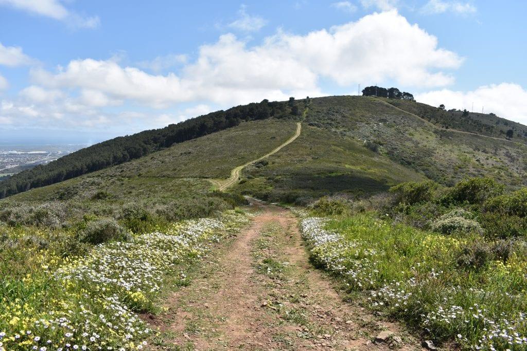 tygerberg-nature-reserve-hikes