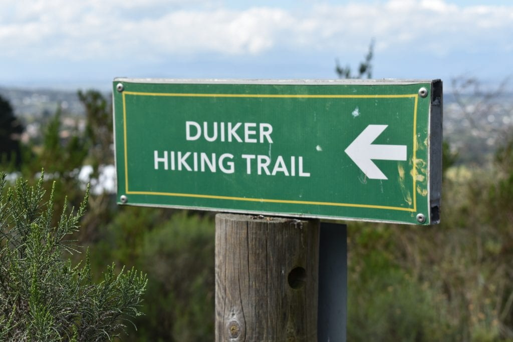 hiking-tygerberg-nature-reserve