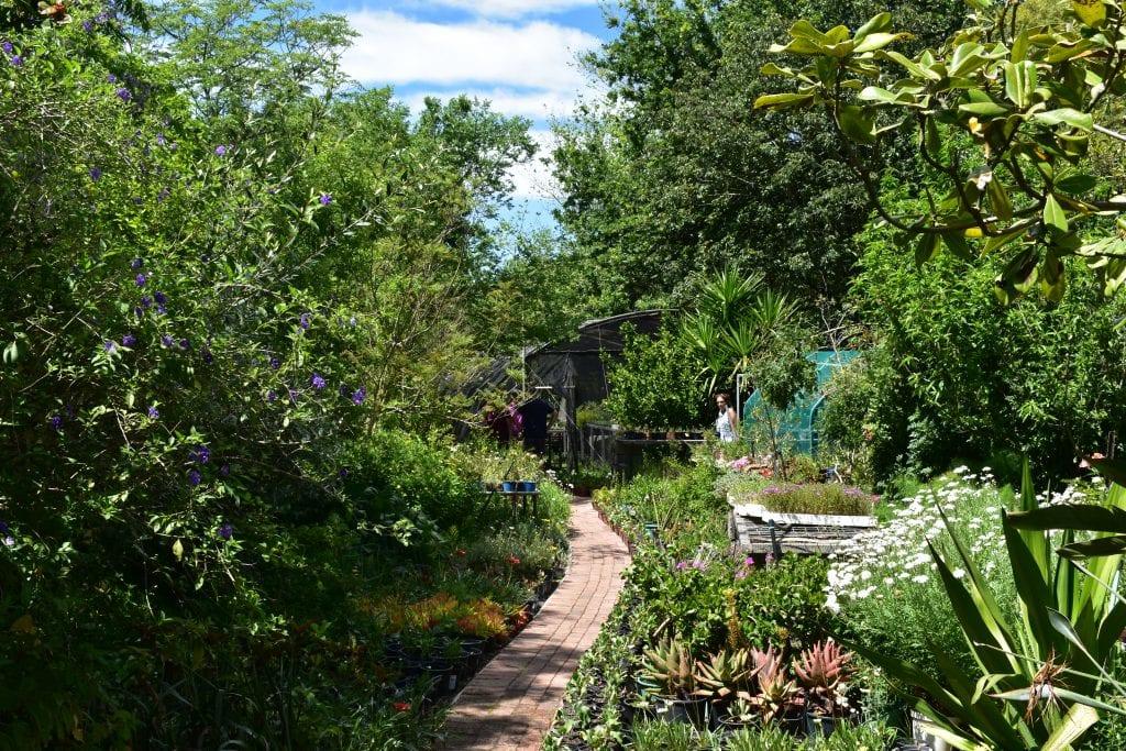 avondale-garden-day