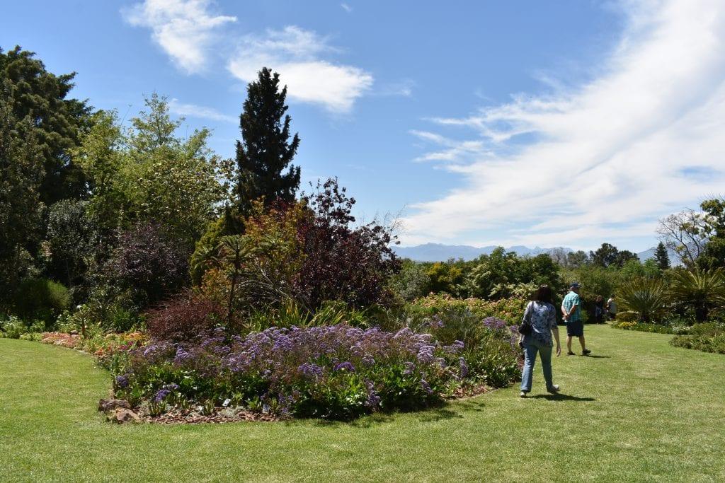 avondale-open-gardens-cape-town