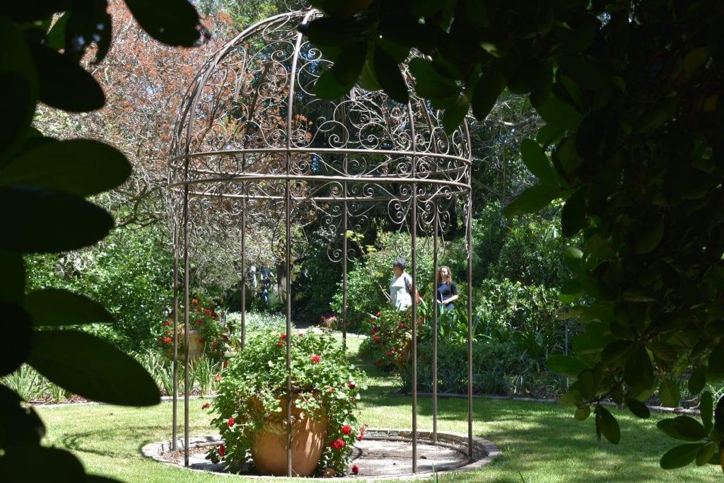 avondale-garden-cape-town-city