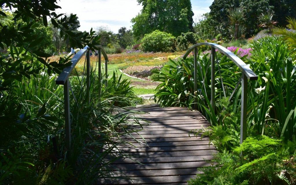 bridge-avondale-garden-durbanville