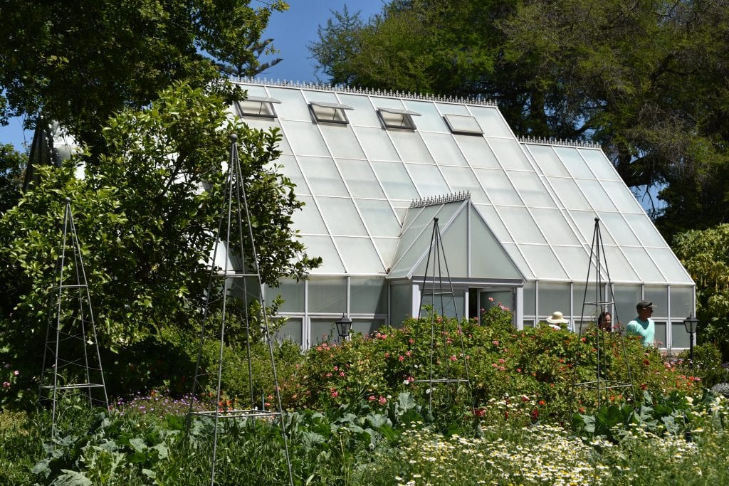 avondale-orchid-glass-house