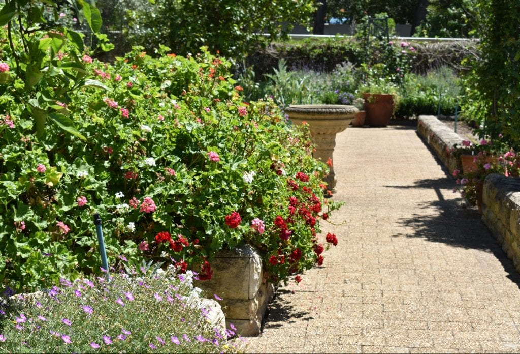 avondale-open-garden-durbanville-northern-suburbs