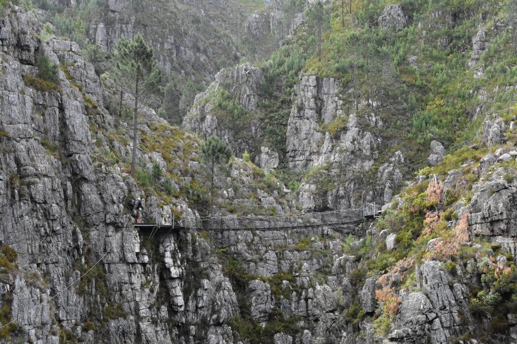cape-canopy-tour-zipline