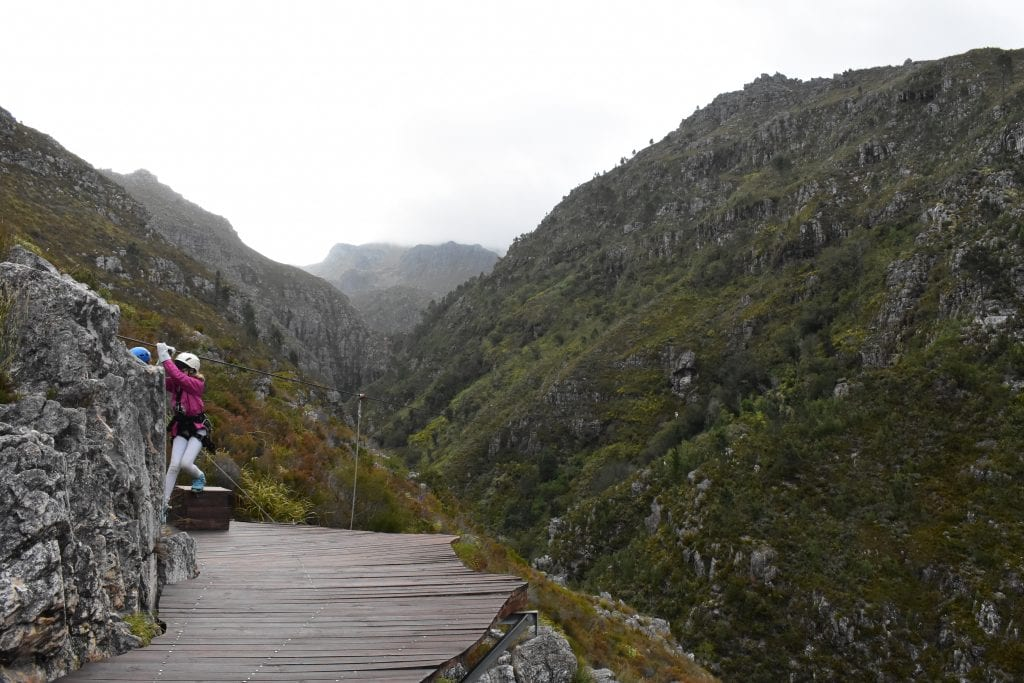 ziplining-cape-canopy-tour-south-africa