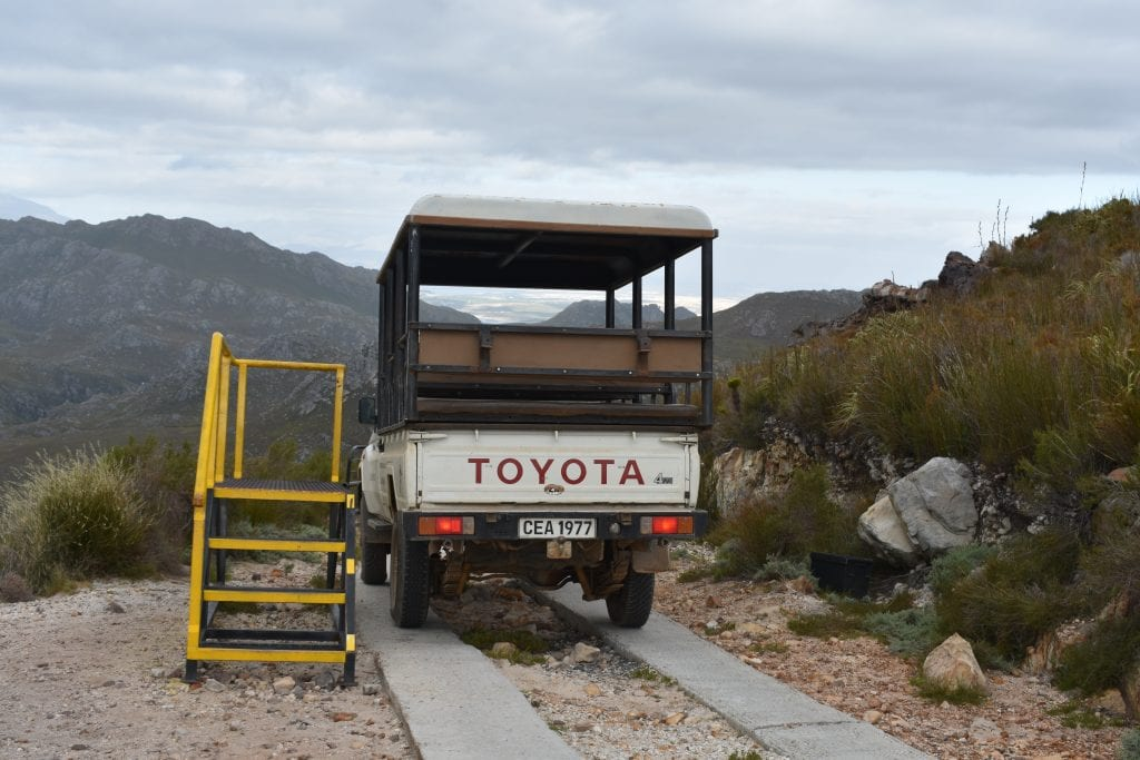 cape-canopy-tour-pickup