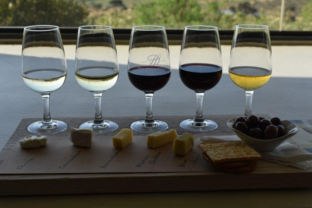 durbanville-hills-wine-estate