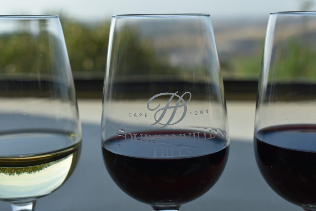 durbanville-hills-wine-tasting