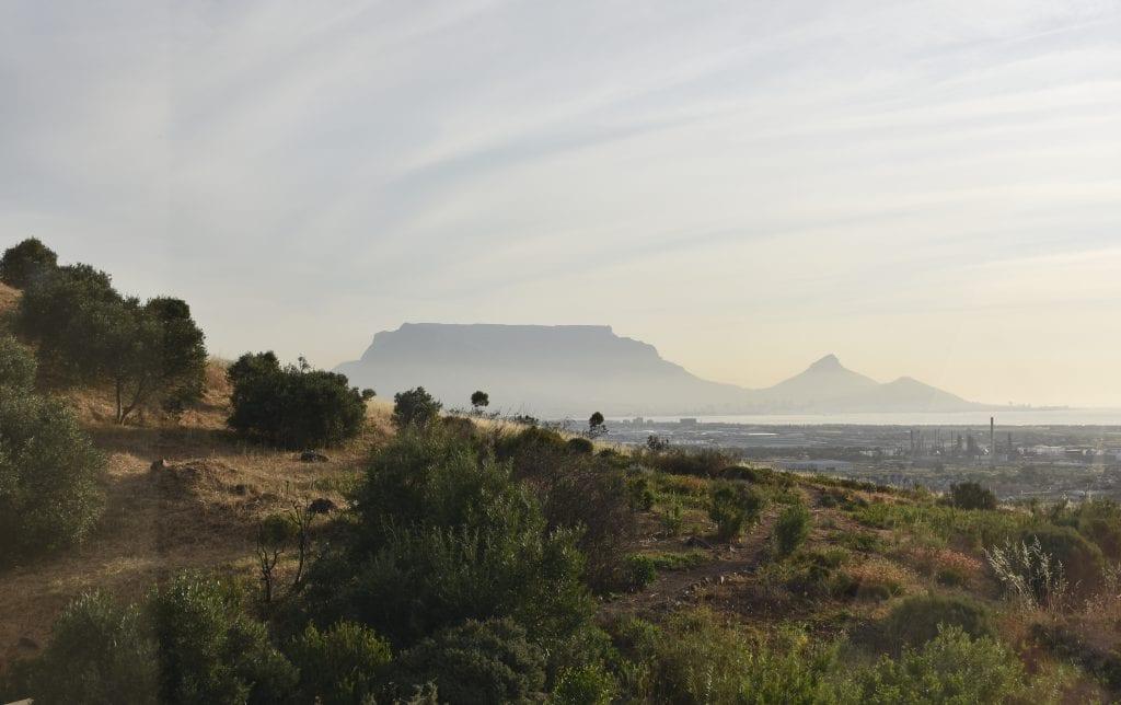 durbanville-hills
