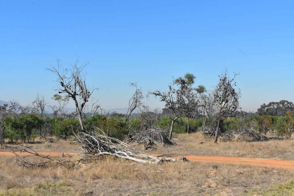villiera-wildlife-sanctuary