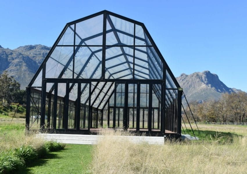 the-cathedral-blaauwklippen-vineyards-wedding-venue
