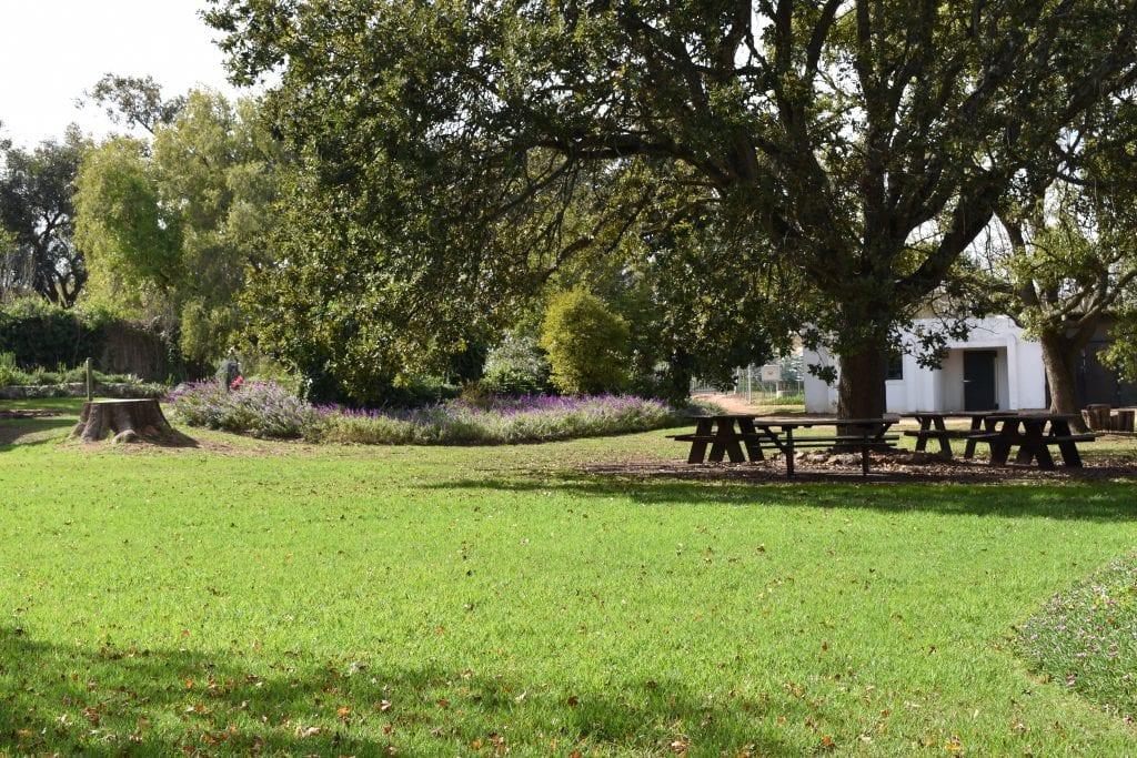 joostenberg-wine-estate-grounds