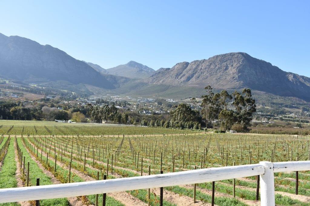 mont-rochelle-franschhoek-wine-estate