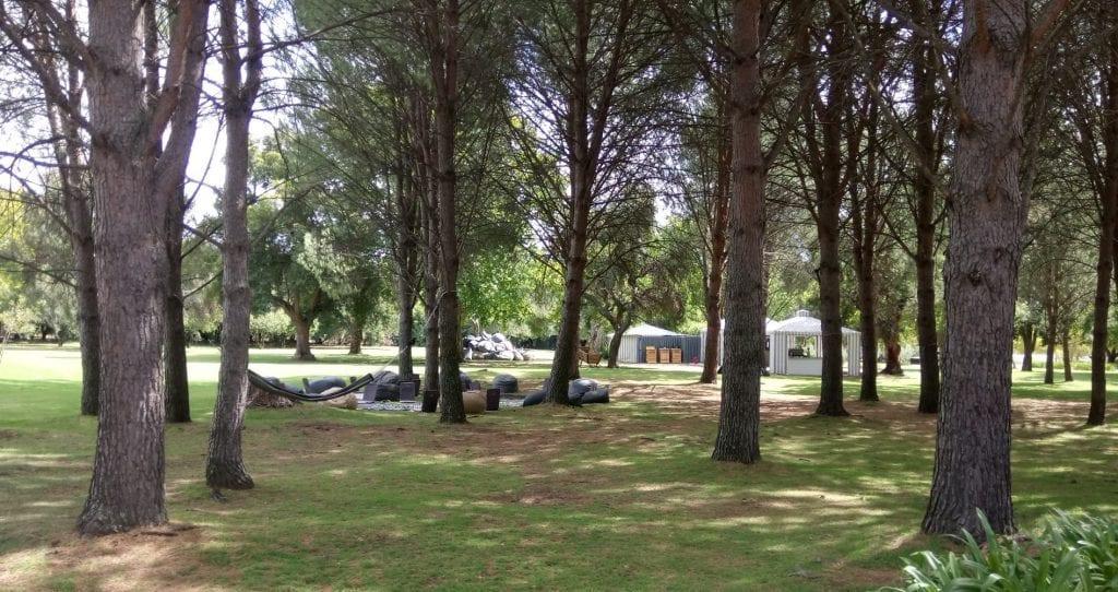 boschendal-wine-farm-picnic