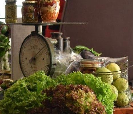 covid-19-food-drive