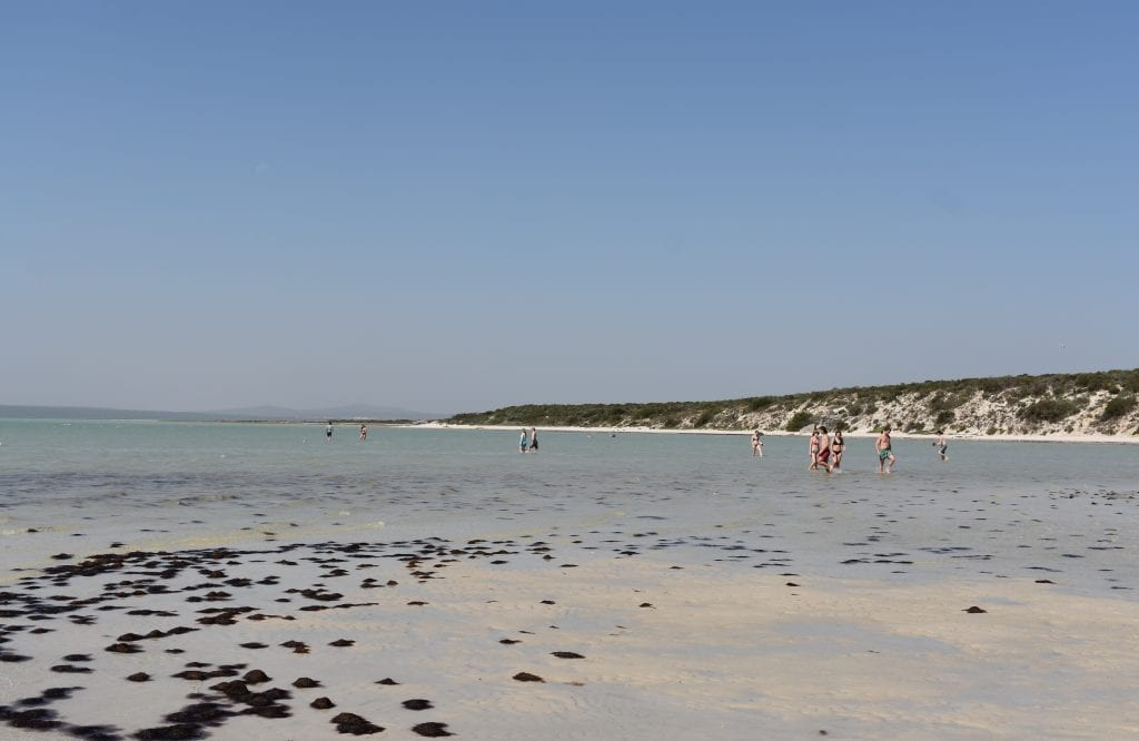 west-coast-national-park-kraalbaai