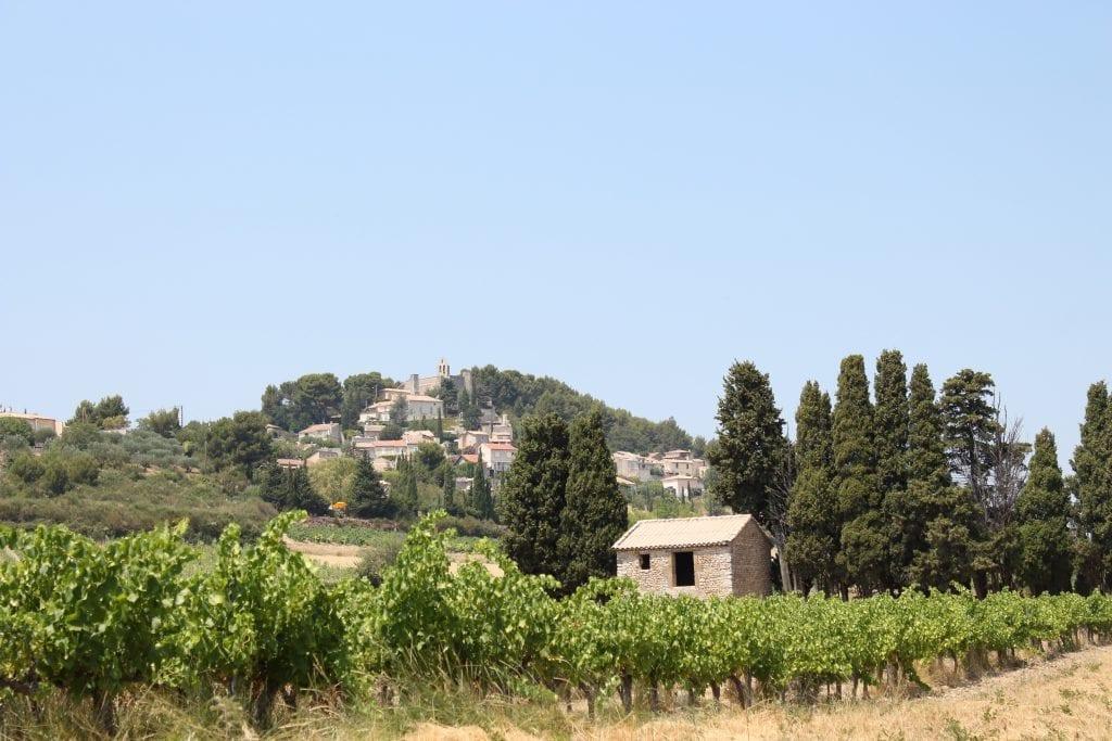 provence-wine-region-alicia-chamaille