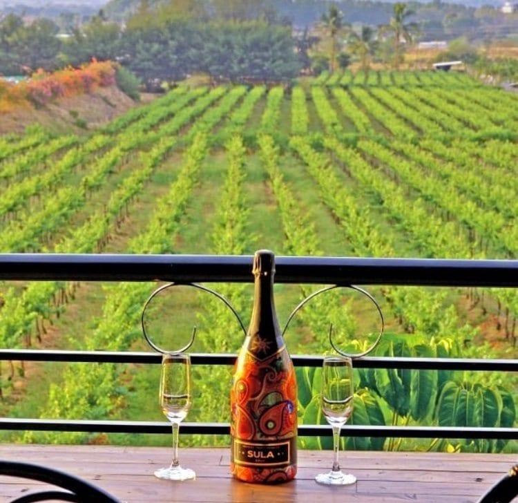 sula-vineyards-india