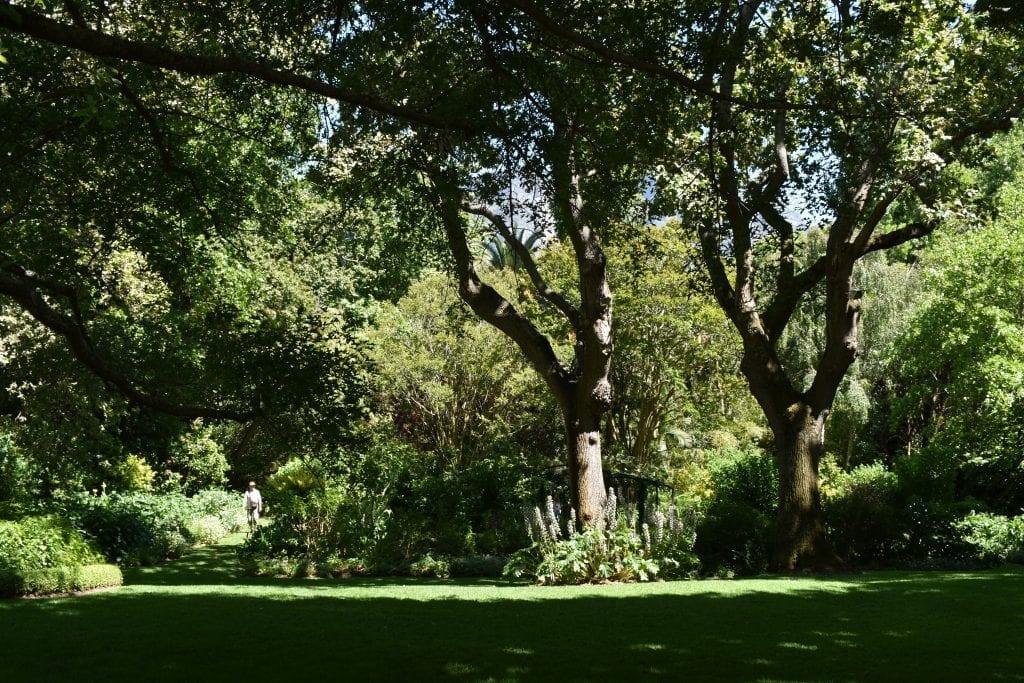 stellenberg-open-gardens-cape-town-main-lawns
