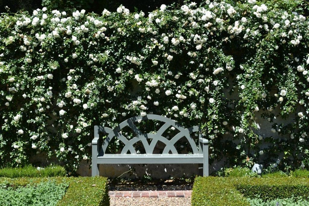 stellenberg-gardens-walled-garden-cape-town