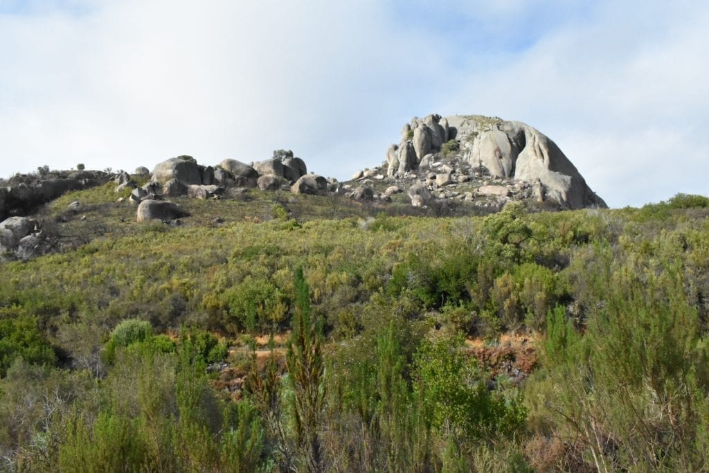 hiking-to-paarl-rock-paarl-mountain-nature-reserve