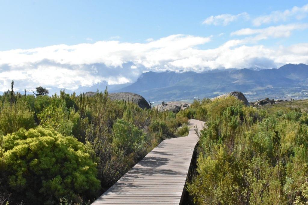 paarl-rock-hike-walkway