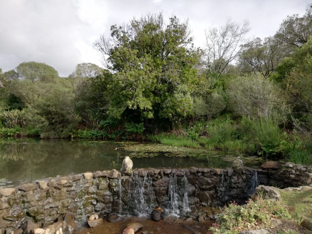 meulwater-botanical-garden-paarl-mountain-nature-reserve