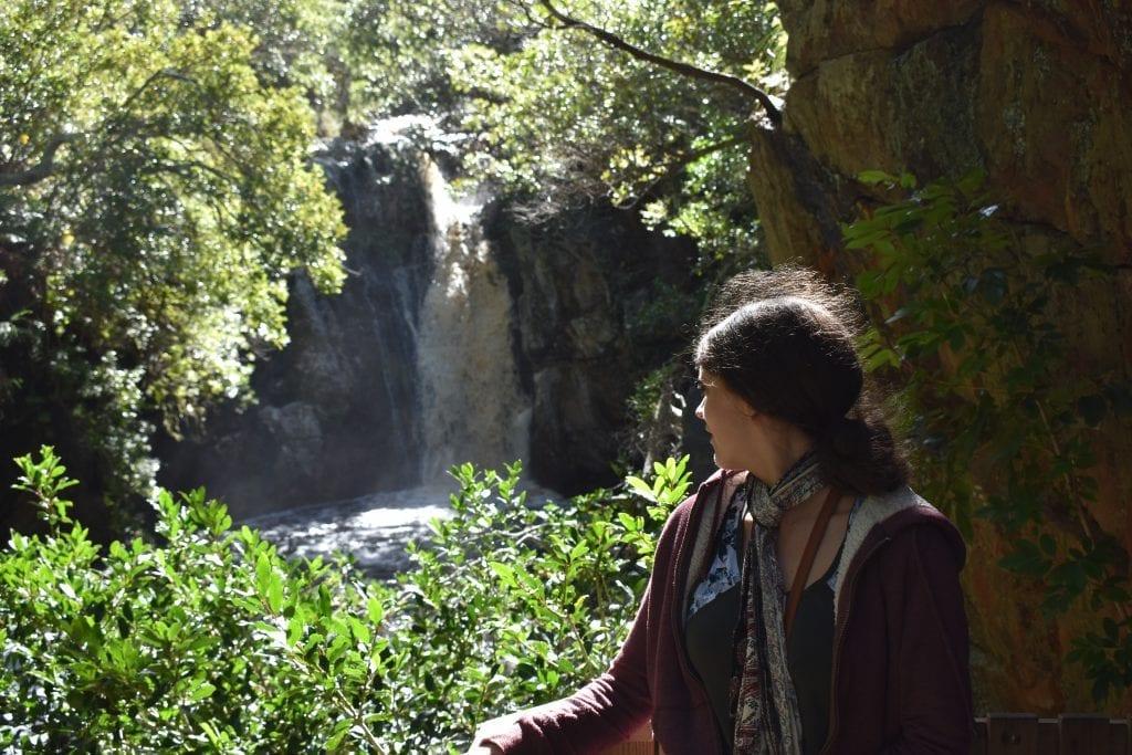 harold-porter-botanical-gardens-waterfall