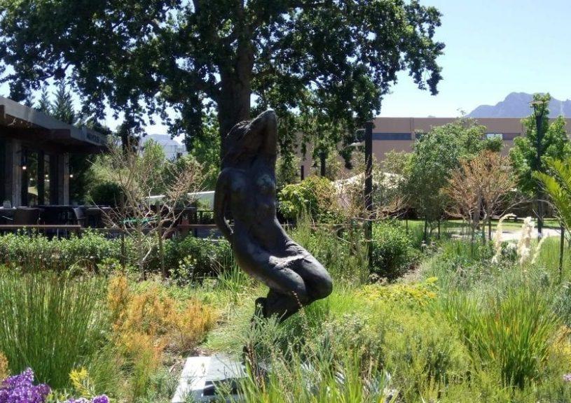 gardens-to-explore-year-round-near-the-cape-winelands-lourensford