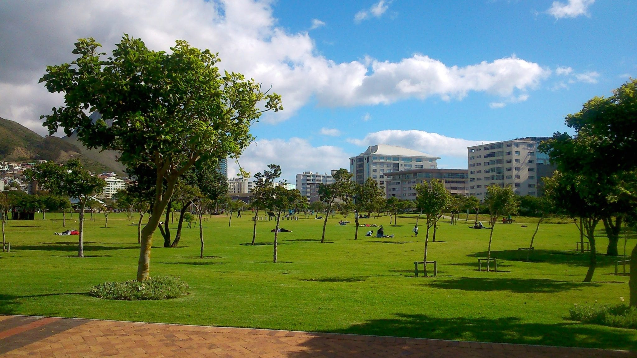 family-friendly-attraction-green-point-urban-park