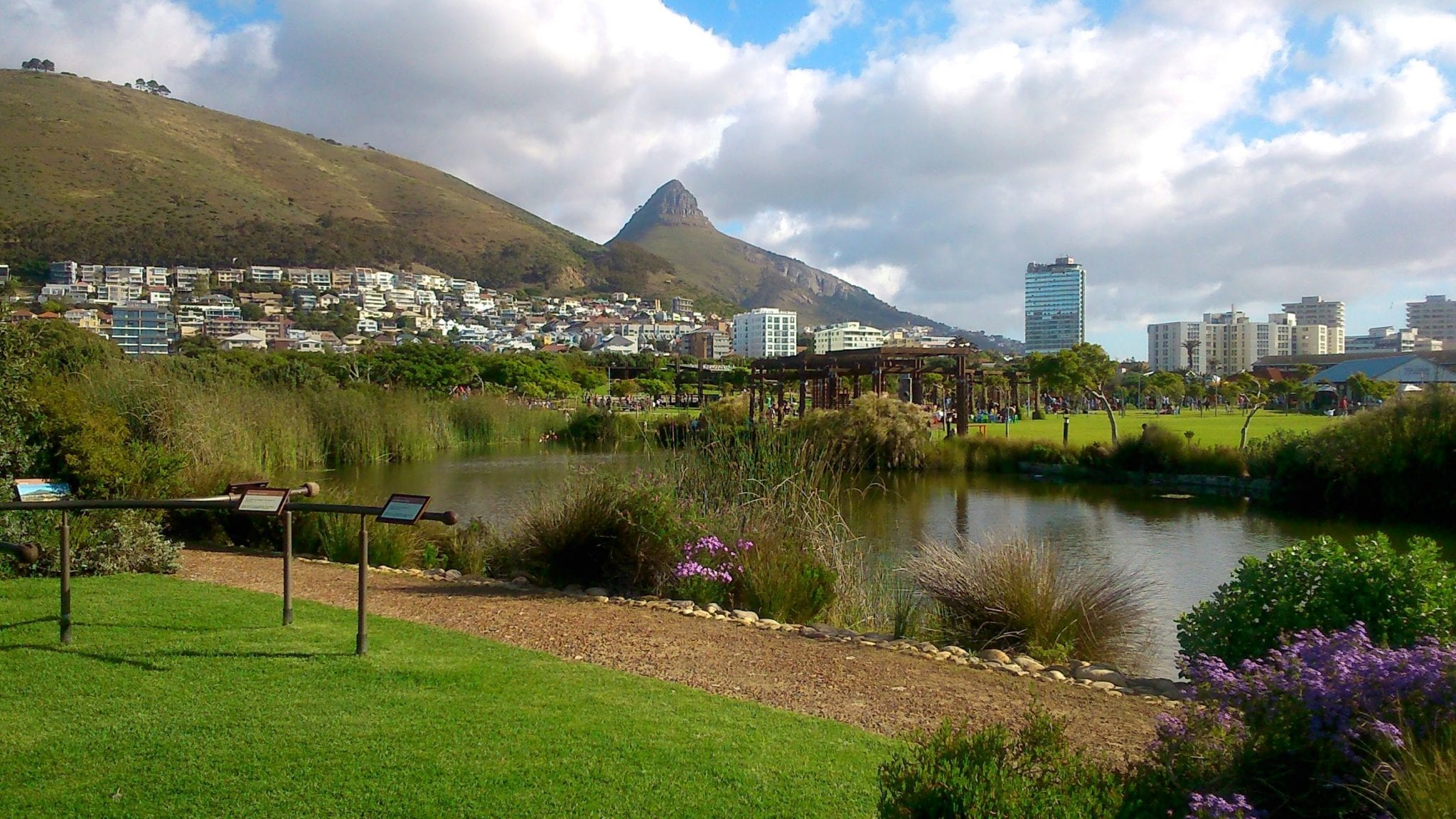 green-point-park