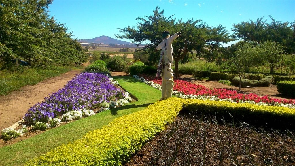 fairview-wine-estate-gardens