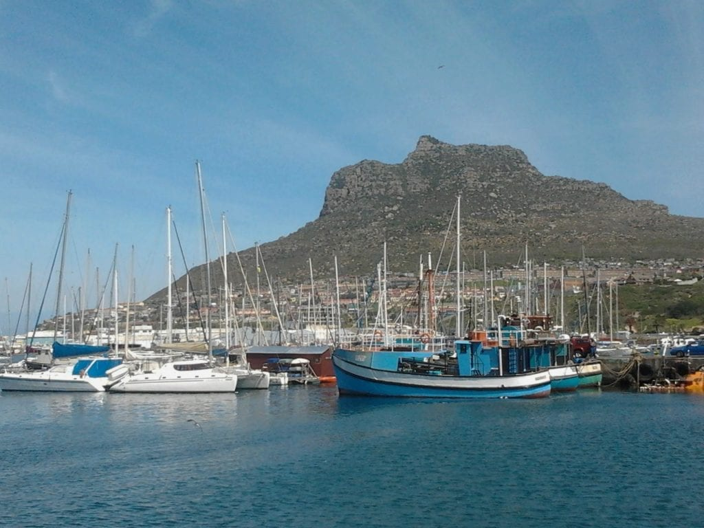 hout-bay-harbour-cape-town