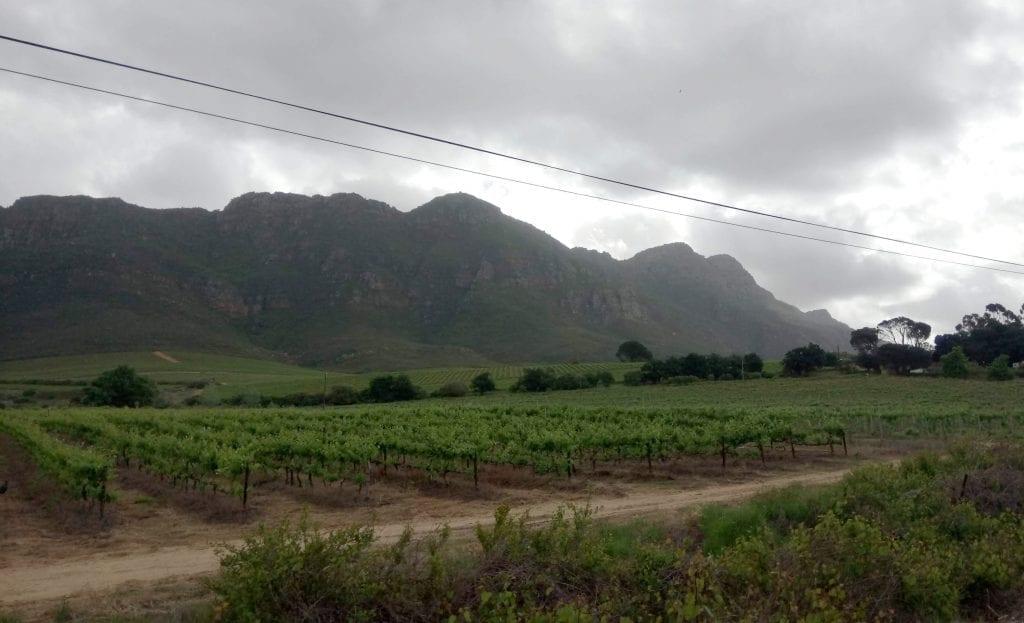 riebeek-valley-swartland