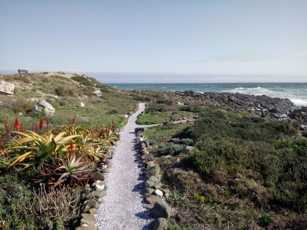 yzerfontein-west-coast