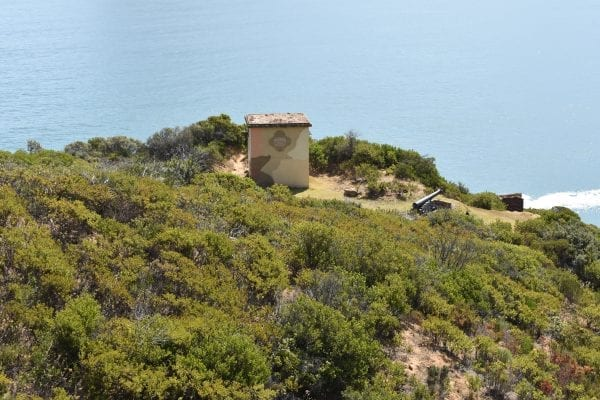 interesting-day-trips-cape-town